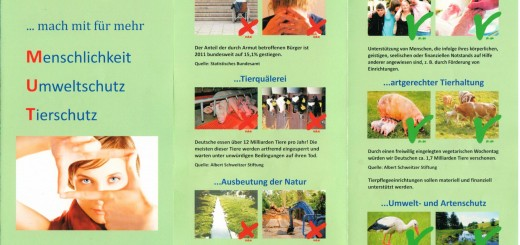Spendenaktion August 2014 Schau hin e.V.